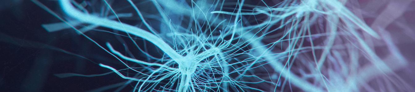 Bioidentische Hormontherapie Behandlungsmethode in der Naturheilkunde